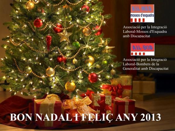 Bon Nadal i Feliç any 2013!