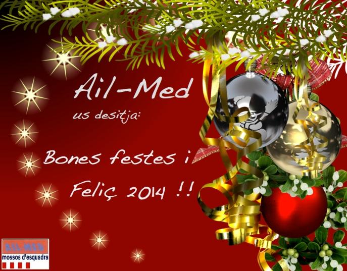 Postal Nadal 2013 Ail-Med